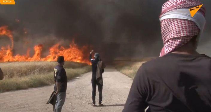 Požáry, které spalují hektary zemědělské půdy v Sýrii, se mohou rozšířit až do ropných zařízení