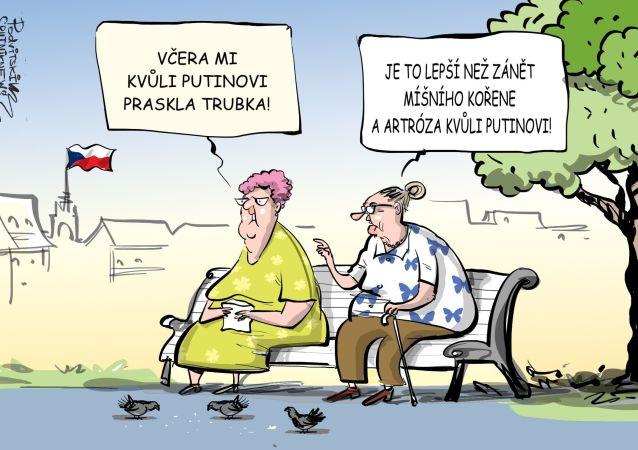 Za všechny problémy v Česku může Putin