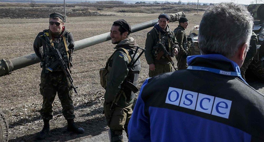 Člen zvláštní mise OBSE