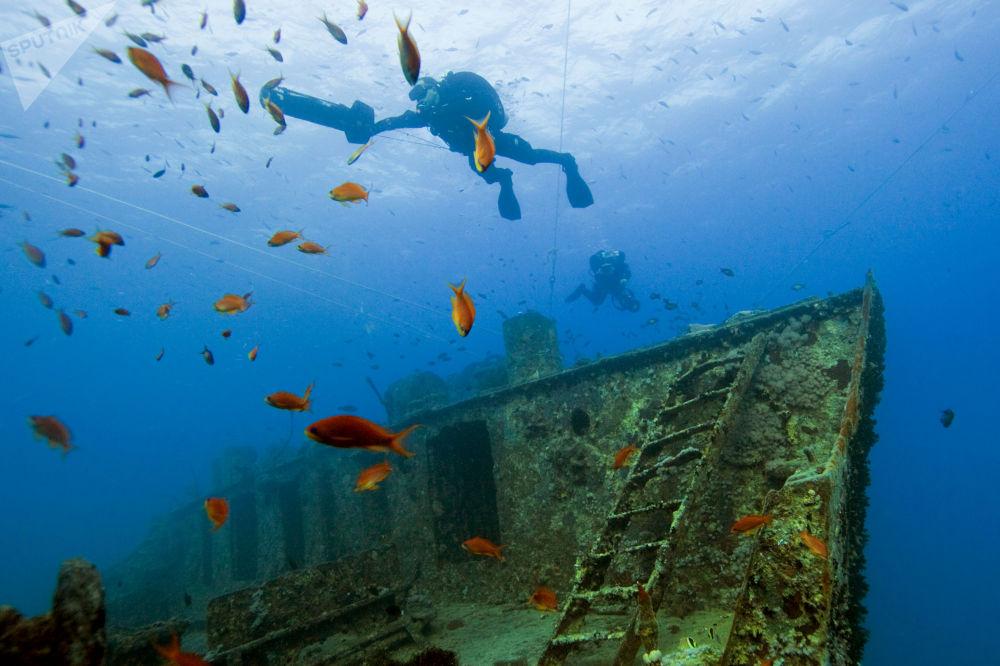 Potápěči na místě dopravní lodi Thistlegorm, která se potopila v Suezském zálivu v roce 1941, Egypt.
