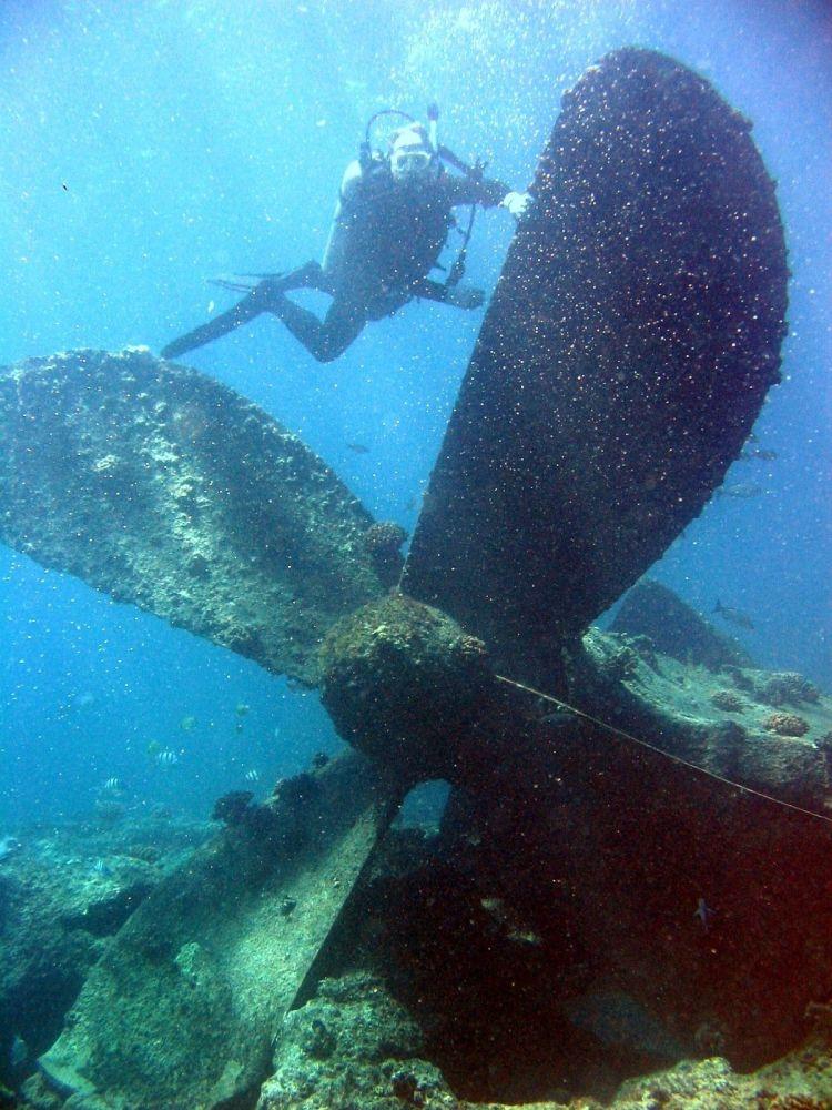 Potápěč během ponoření, Pearl a Hermes, Hawaii.