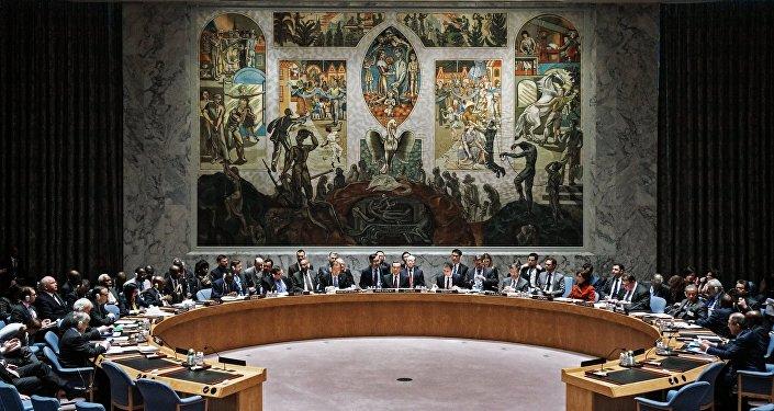 Rada bezpečnost OSN