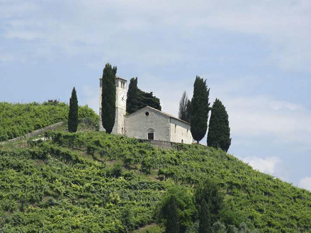 Kostel svatého Vigiliusa a vinice, kde se pěstuje Prosecco, Itálie