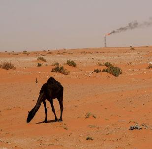 Poušť v Saúdské Arábii