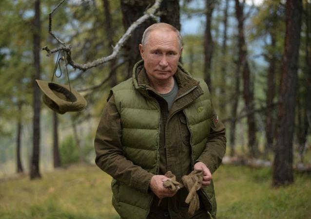 Ruský prezident Vladimir Putin v tajze