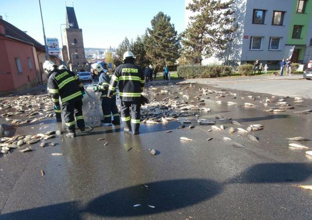 Kuriózní dopravní nehoda v Rakovníku. Dvě tuny kaprů skončily na silnici