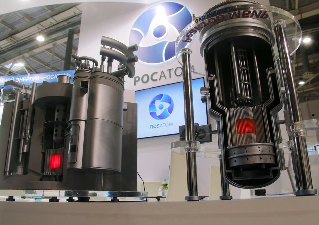 Modely jaderných reaktorů BREST a MBIR