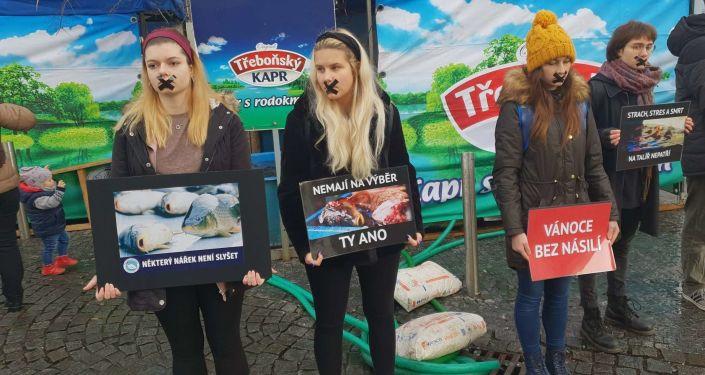 Akce proti prodejcům kaprů