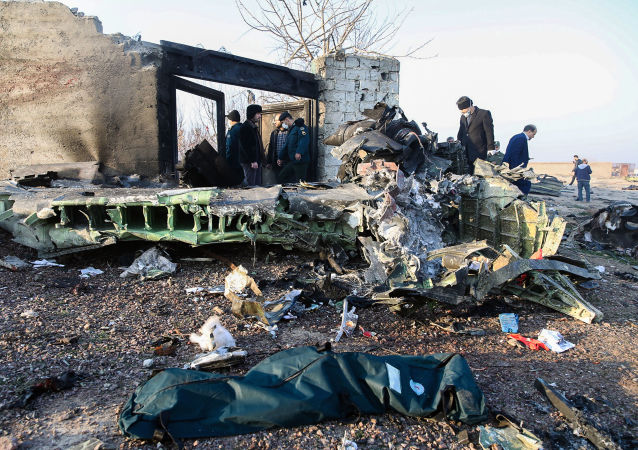 Havárie ukrajínského Boeingu 737, Írán (8. ledna 2020).