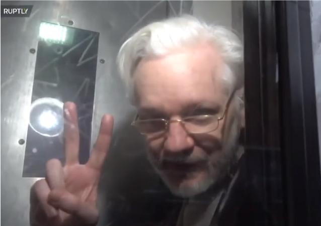 Julian Assange před londýnským soudem, 13. ledna 2020