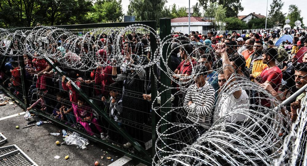 Migranti na srbsko-maďarské hranici