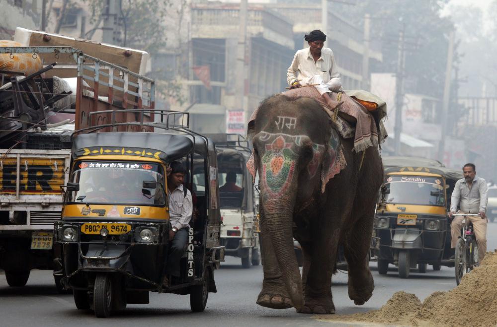 Hustý provoz v indickém Amritsaru