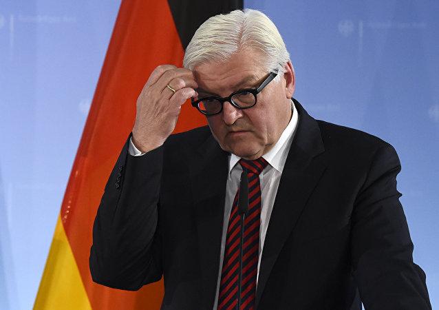 Ministr zahraničí Německa Frank-Walter Steinmeier
