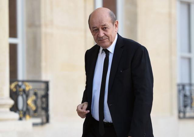 Francouzský ministr obrany Jean-Yves Le Drian