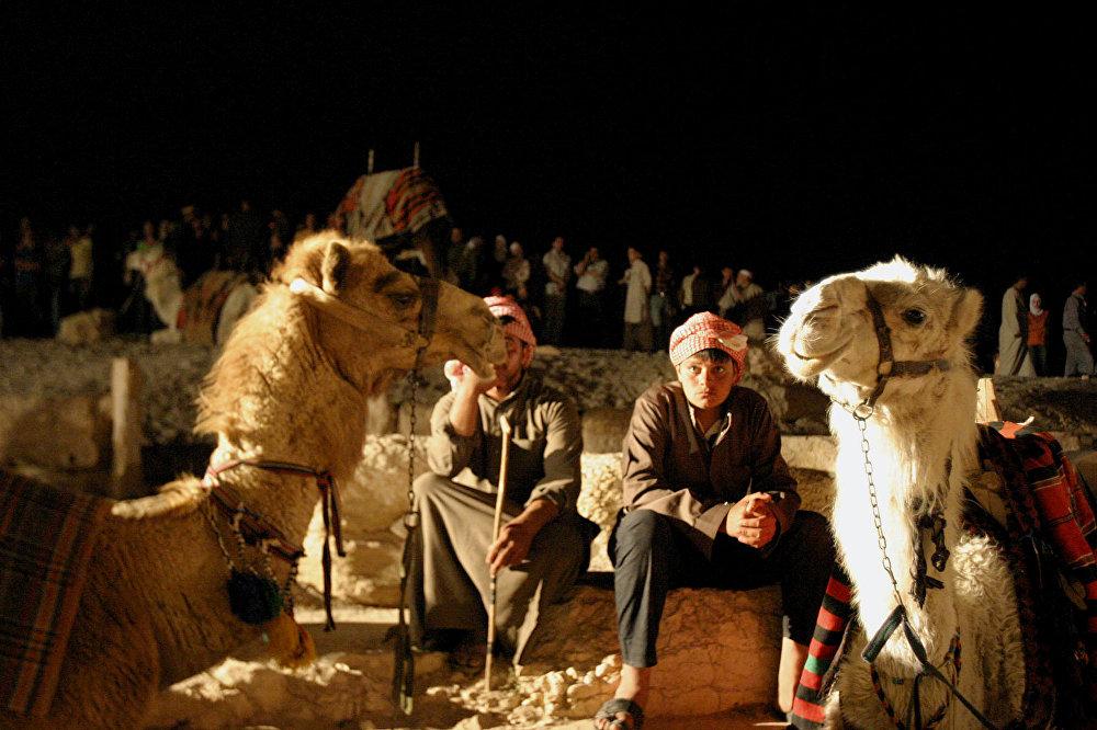 Syrští beduíni hlídají velbloudy.