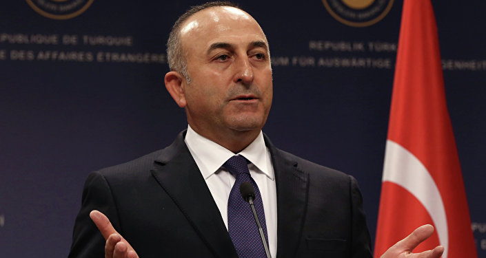 Turecký ministr zahraničních věcí Mevlut Čavušoglu