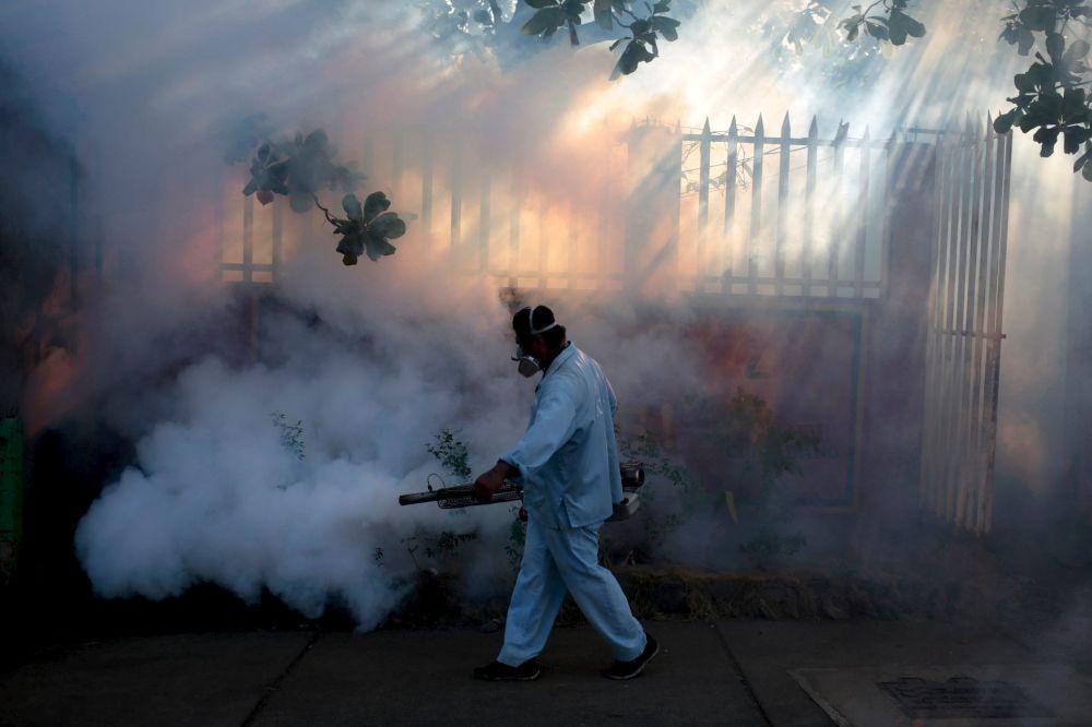 Boj proti viru Zika