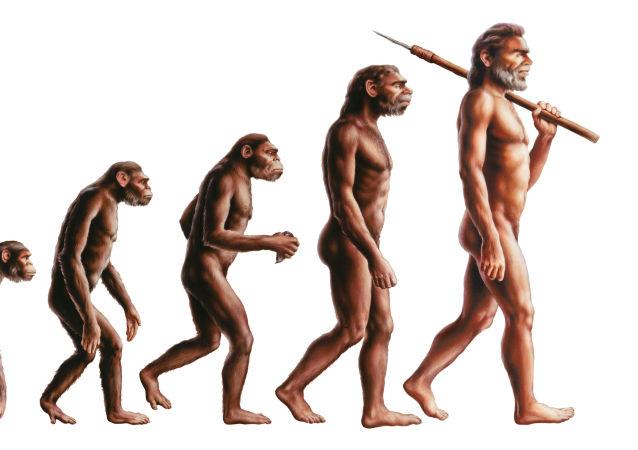 Evoluce člověka
