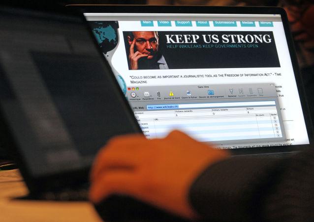 Stránka WikiLeaks