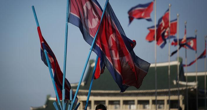 Vlajky KLDR