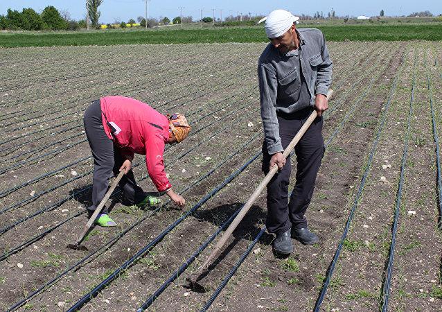 Zemědělci