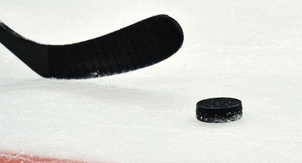 Led a hokejka. Ilustrační foto