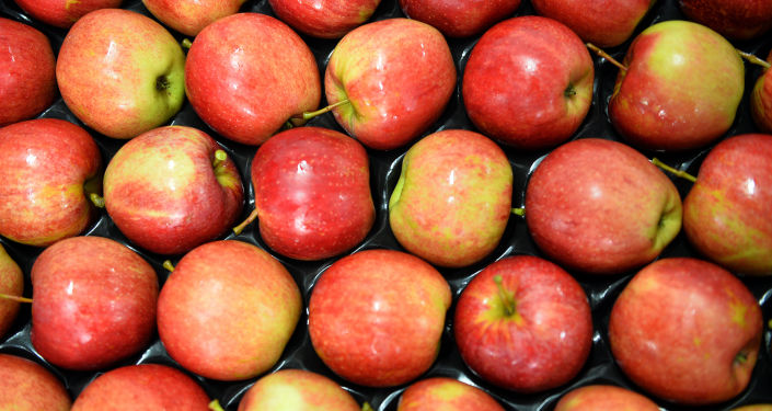 Polská jablka