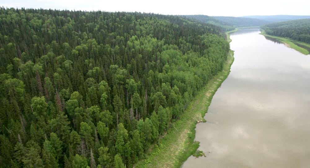 Řeka Velký Pit v Krasnojarském kraji