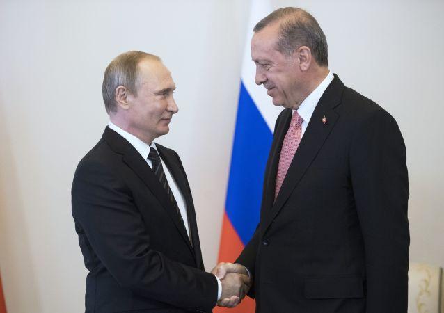 Schůzka Putina s Erdoganem v Petrohradě