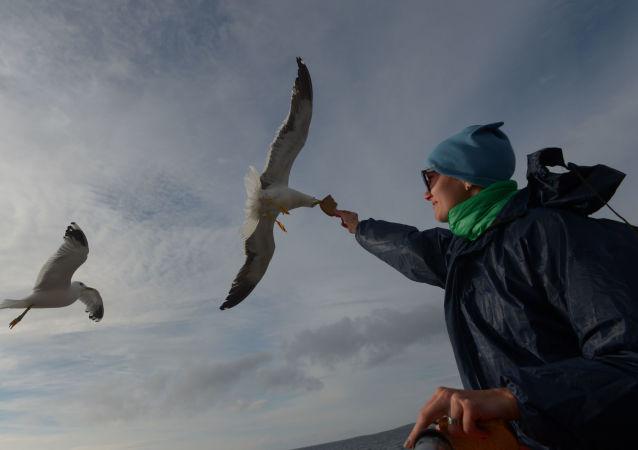 Duch svobody Soloveckých ostrovů