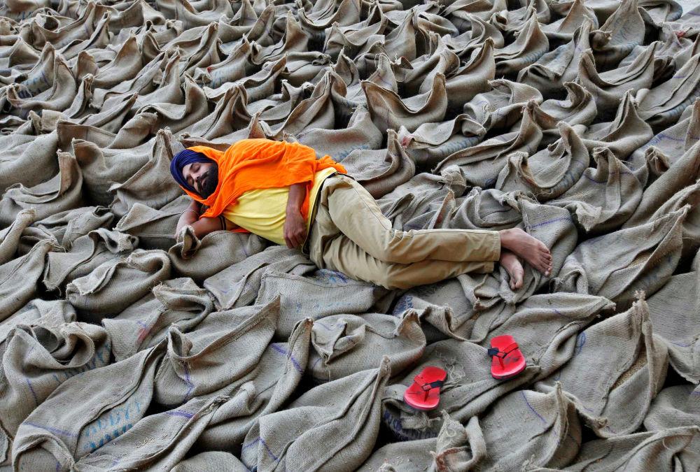 Farmář leží na pytlích s rýží na velkoobchodním trhu v Čandígarhu