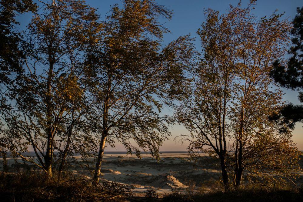 Kuršská kosa – vizitka Jantarového kraje