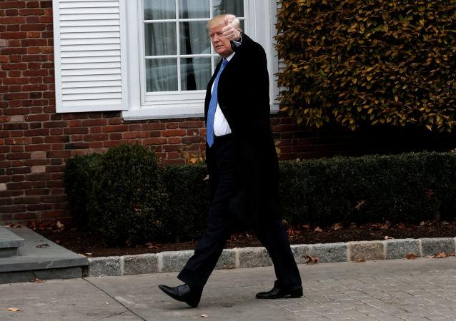 Nově zvolený prezident USA Donald Trump