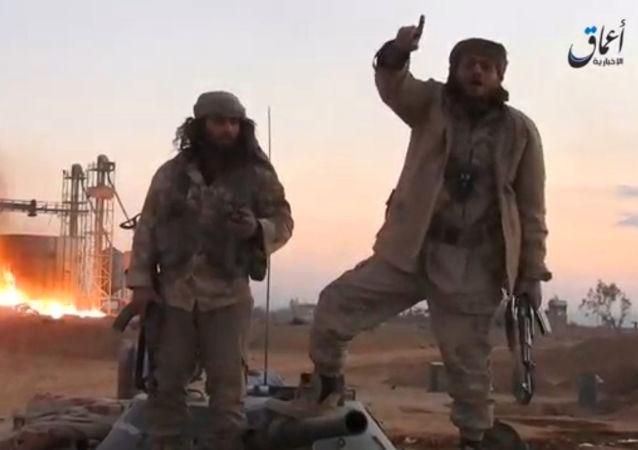 Radikálové IS u Palmýry