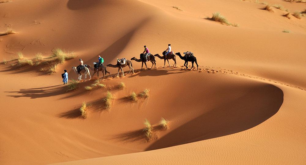 Poušť Sahara