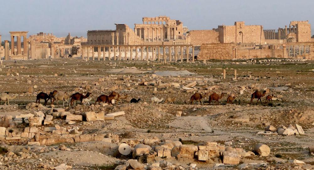 Palmýra, Sýrie.