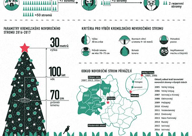 Hlavní novoroční strom Ruska