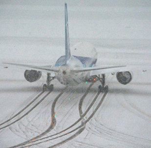 Letadlo společnosti  All Nippon Airways