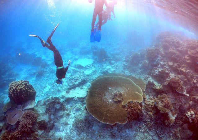 Velký bariérový útes. Ilustrační foto