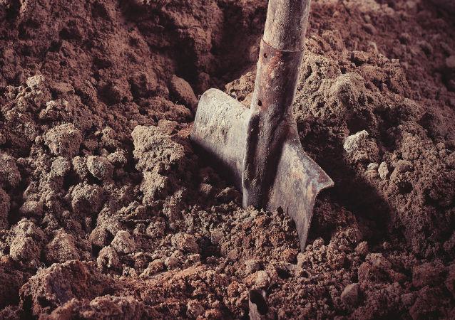 Lopata. Ilustrační foto
