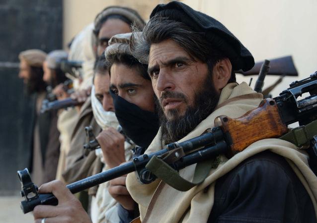 Afghánští tálibi