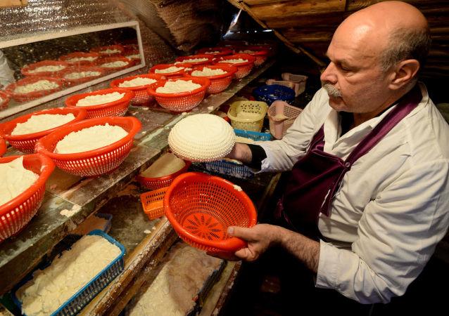 Výroba sýrů v Rusku