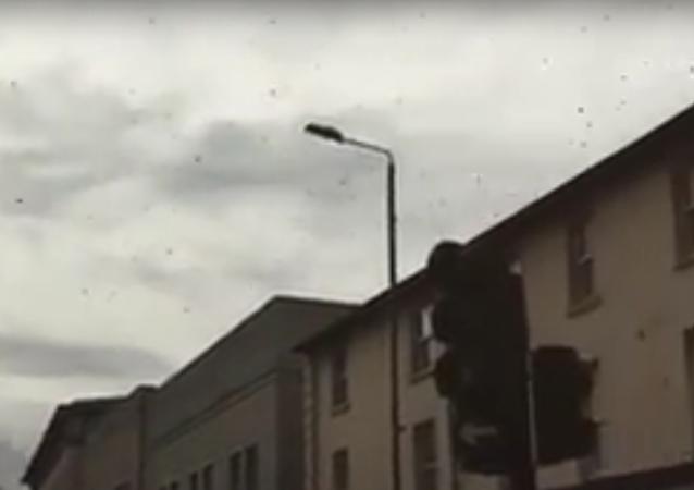 Obrovský včelí roj zastavil dopravu v centru Londýna