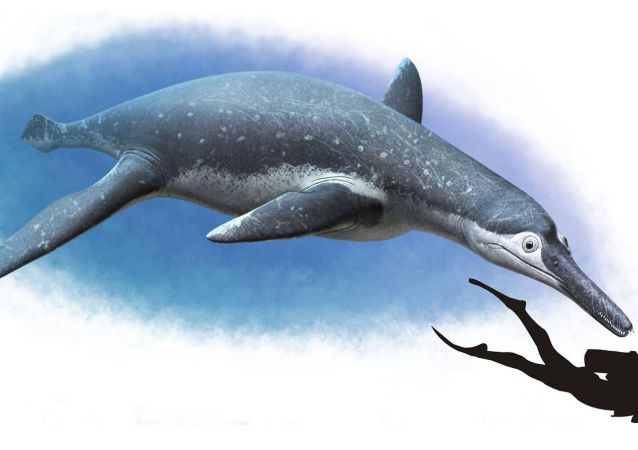 Velký mořský ještěr, pojmenovaný Luskhan itilensis