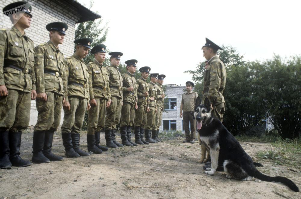 Služba strážců státní hranice