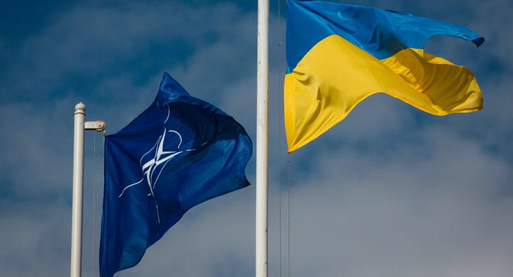 Vlajky NATO a Ukrajiny