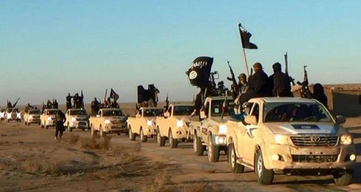 Bojovníci IS