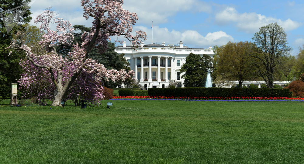 Podle hamburkských výpočtů: setkání Trumpa a Putina se uskuteční. Ale jaké? Názor