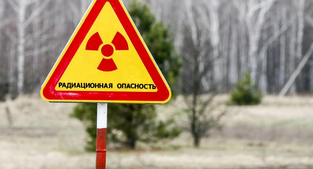 cdncz2.img.sputniknews.com/images/555/93/5559341.jpg