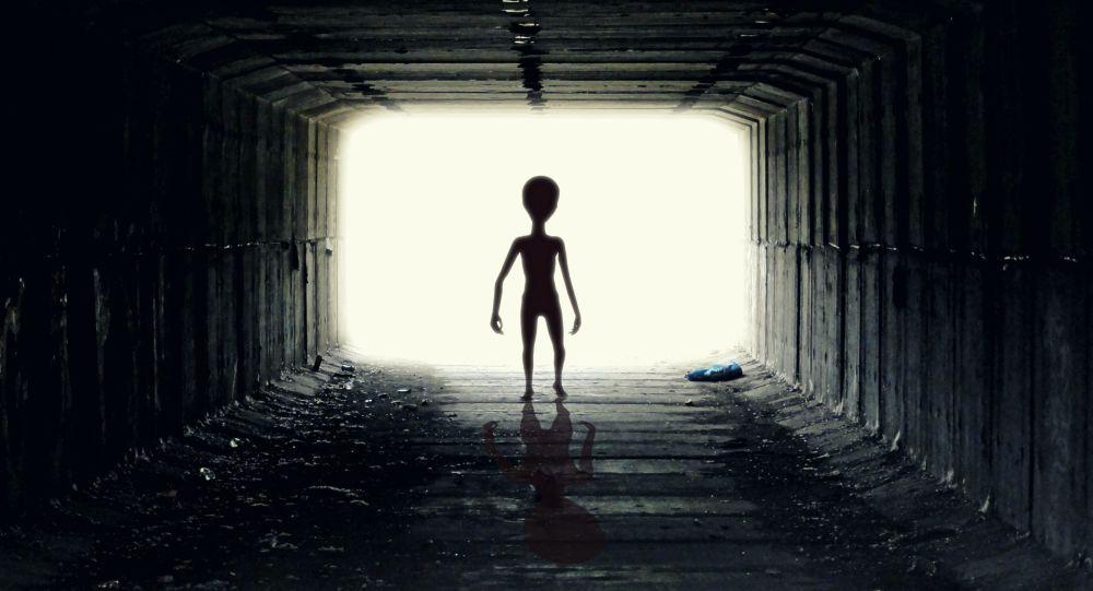 Mimozemšťan
